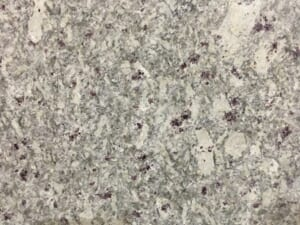 Đá Granite Moon White 1